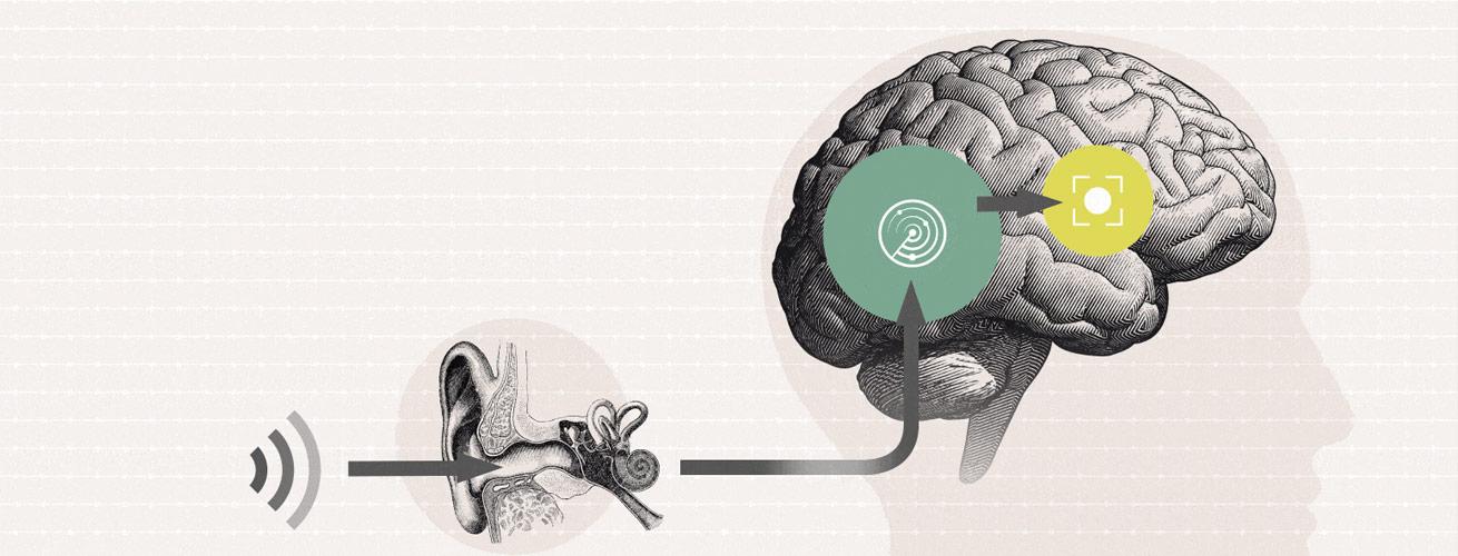 Oticon-Brain-Hearing-2020